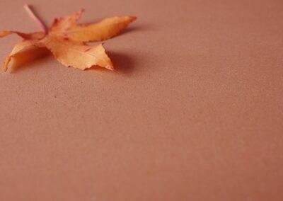 HAGA Calkosit® Naturkalk, rot